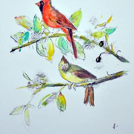 体験講座 鳥の博物画模写