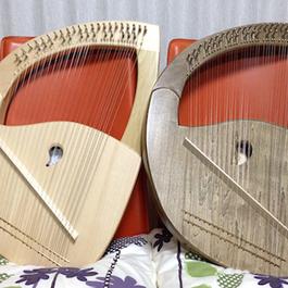 (開設2年目)癒しの竪琴ライアー教室     講師 光枝 康子