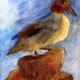 鳥剥製 水彩画_制作時小学6年男の子