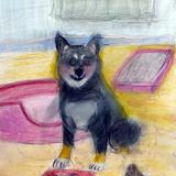 柴犬:水彩画_制作時小学4年女の子