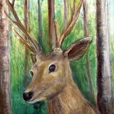森の鹿 水彩パステル 山下 倫子 作