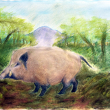 猪 水彩 パステル 大野 和子 作