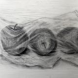 ラップのりんご 鉛筆:森 遙香 作 2020年武蔵野美術大学映像学科合格