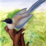 鳥はく製 水彩 パステル 鈴木 こずえ 作 制作時中学3年生